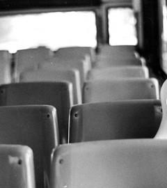 cu mintea pe bus-y