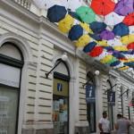 Street Delivery la Timisoara 2014 (216)