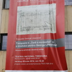Street Delivery la Timisoara 2014 (234)