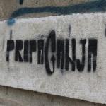 Street Delivery la Timisoara 2014 (254)