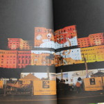 Street Delivery la Timisoara 2014 (31)