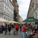 Street Delivery la Timisoara 2014 (75)