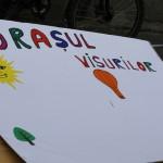 Street Delivery la Timisoara 2014 (78)