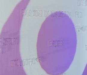 kinema ikon alien armpit bogdan tomsa (5)